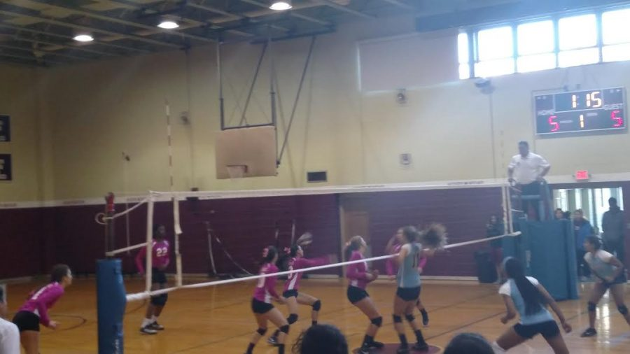 The+Mustangs+Volleyball+players%2C+in+pink%2C+faced+many+obstacles+this+season%2C+but+went+farther+than+ever+before.+Photo+by+Cassidy+Polga.