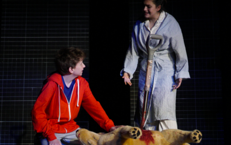 """""""The Curious Incident of the Dog in the Nighttime"""" Fall Play Review"""